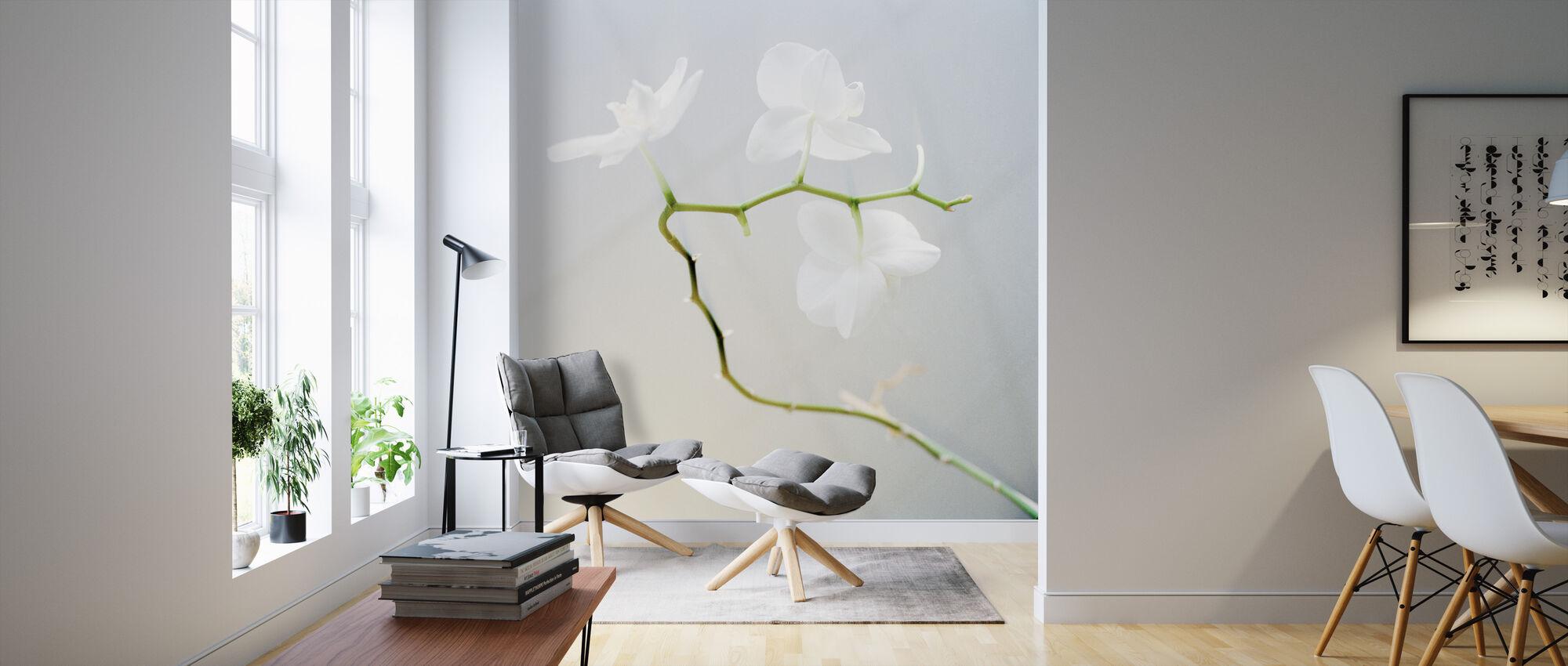 Orchid - Wallpaper - Living Room