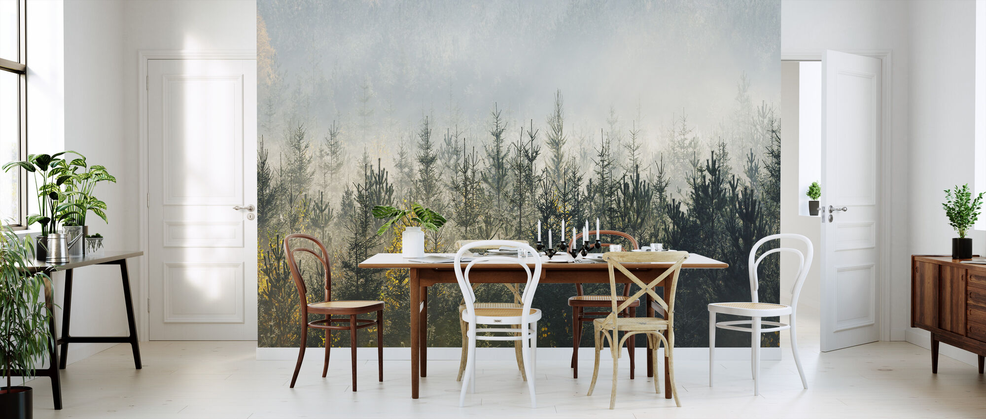 Foggy Forest - Wallpaper - Kitchen