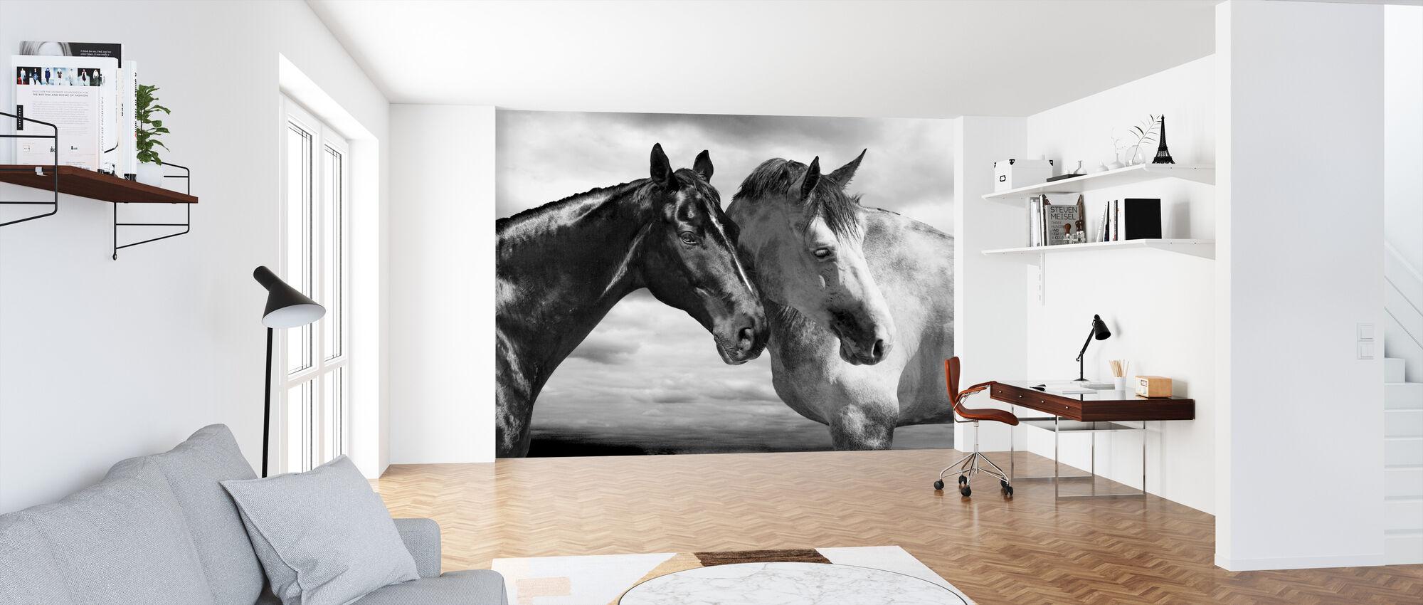 Häst Porträtt - Tapet - Kontor