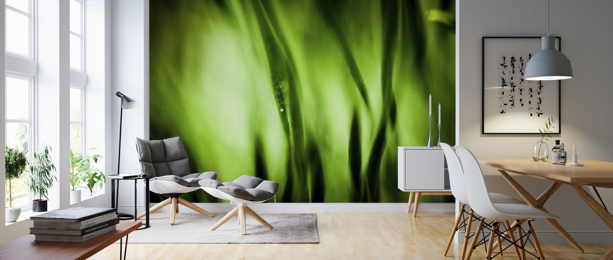 Green Garden - Wallpaper - Living Room