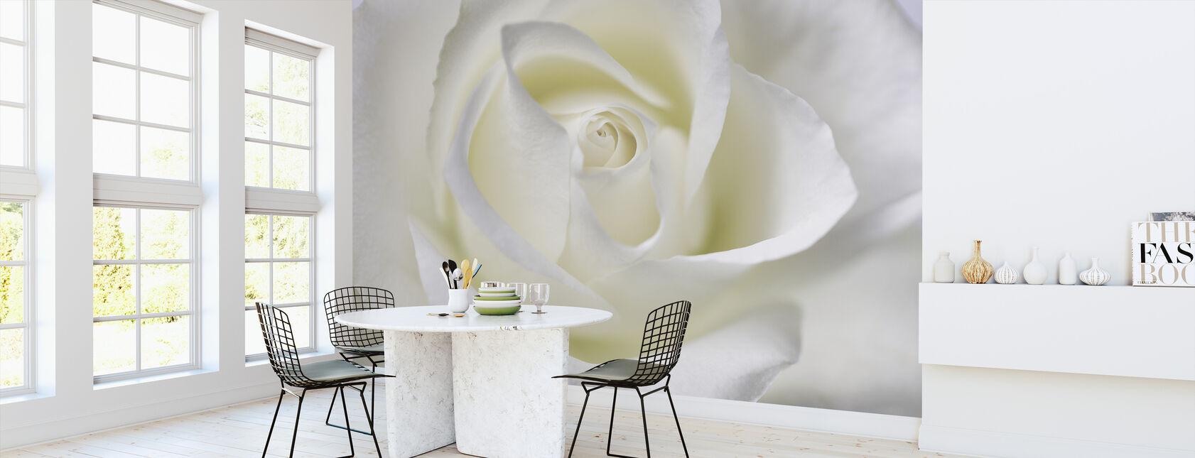 Hvtie Rose - Tapet - Kjøkken