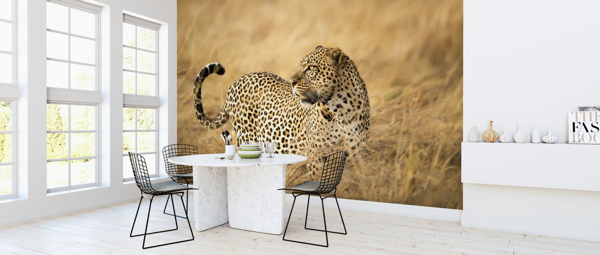 Watching - Wallpaper - Kitchen