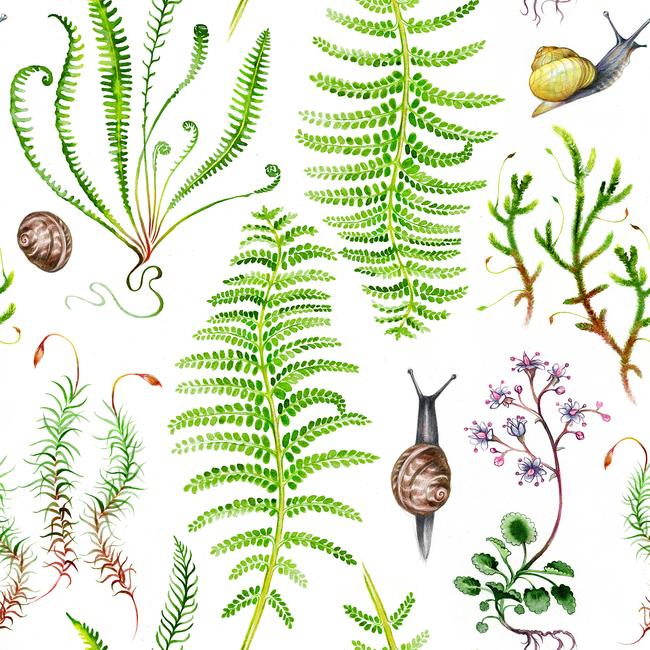 Kuva The Moss Garden After Rain Tapetit / tapetti 100 x 100 cm