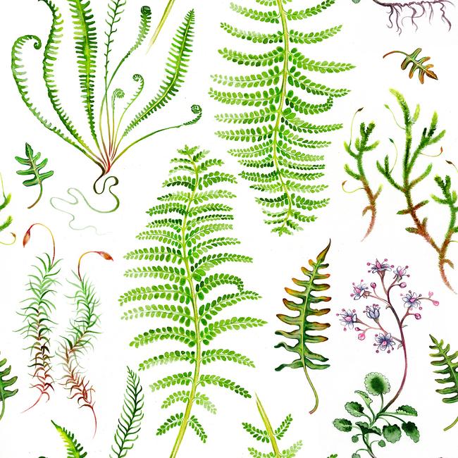 Kuva The Moss Garden Before Rain Tapetit / tapetti 100 x 100 cm