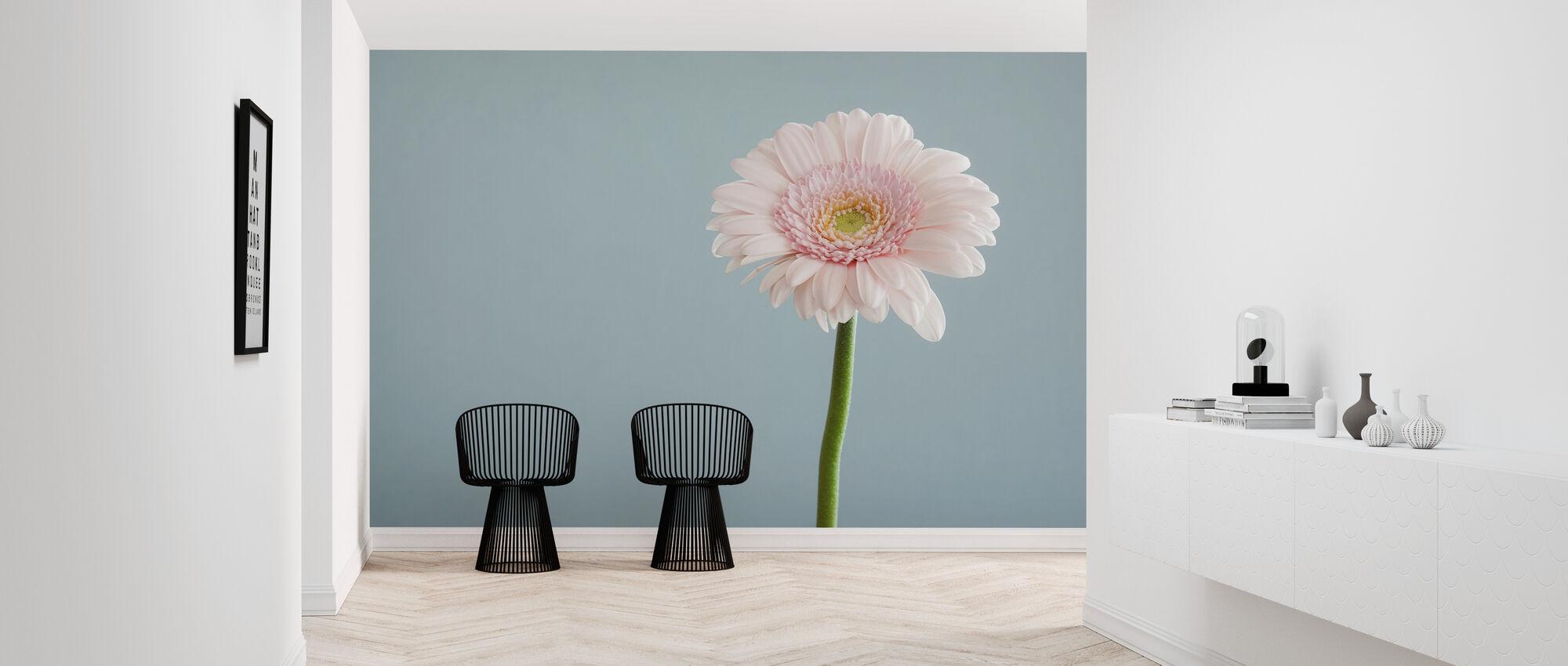 Pink Gerbera Up Close - Wallpaper - Hallway