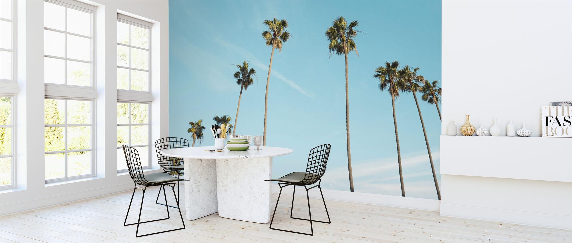 Palm Trees - Wallpaper - Kitchen