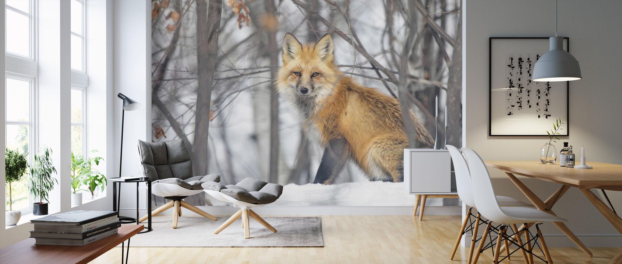 Rødt Fox - Tapet - Stue