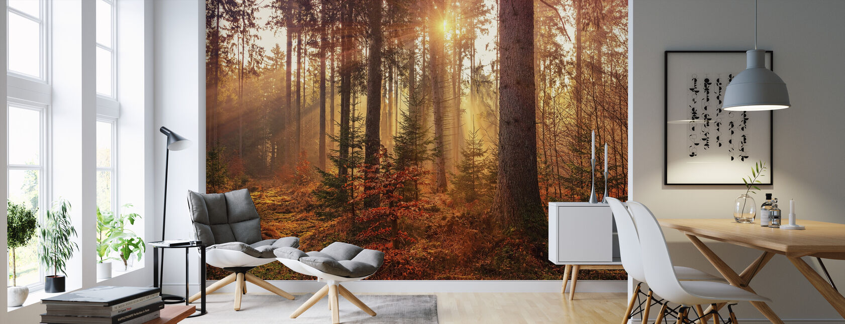 Mystery Forest Light - Wallpaper - Living Room