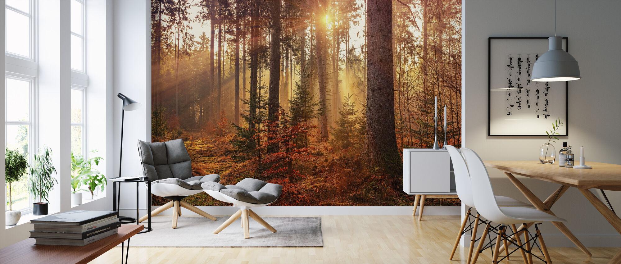 Mystery Forest Light - Wallpaper - Living Room