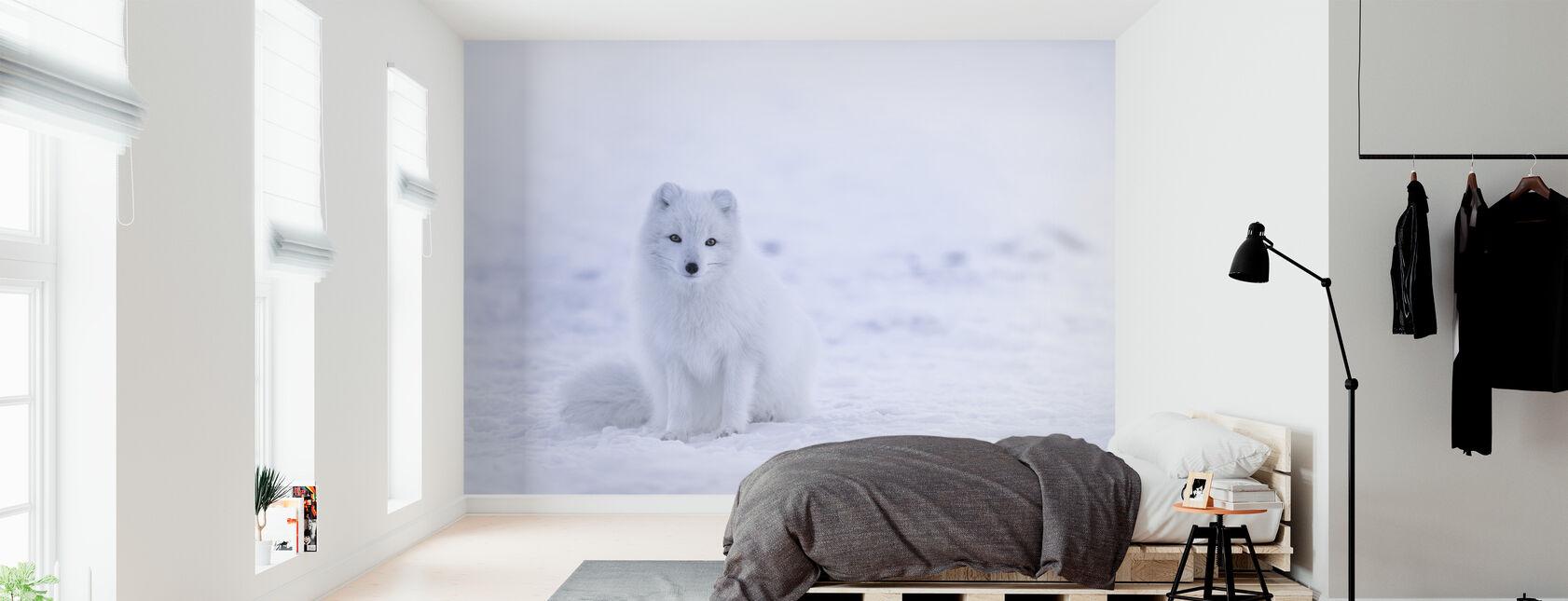 Artic Fox - Wallpaper - Bedroom