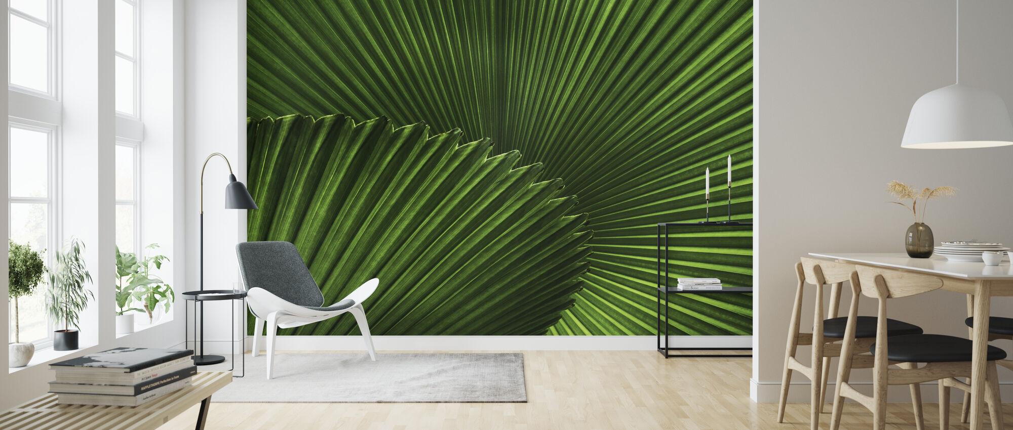 Fan Palm Leaves - Wallpaper - Living Room