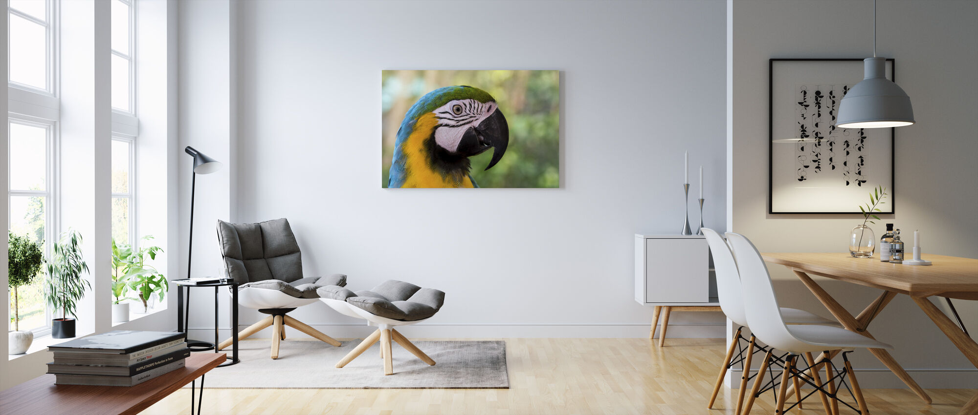 Colorful Macaw - Canvas print - Living Room