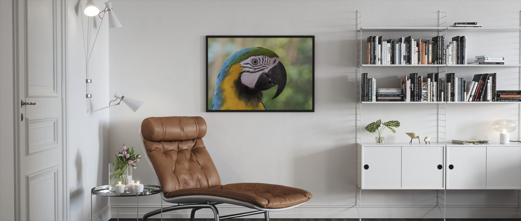 Colorful Macaw - Framed print - Living Room