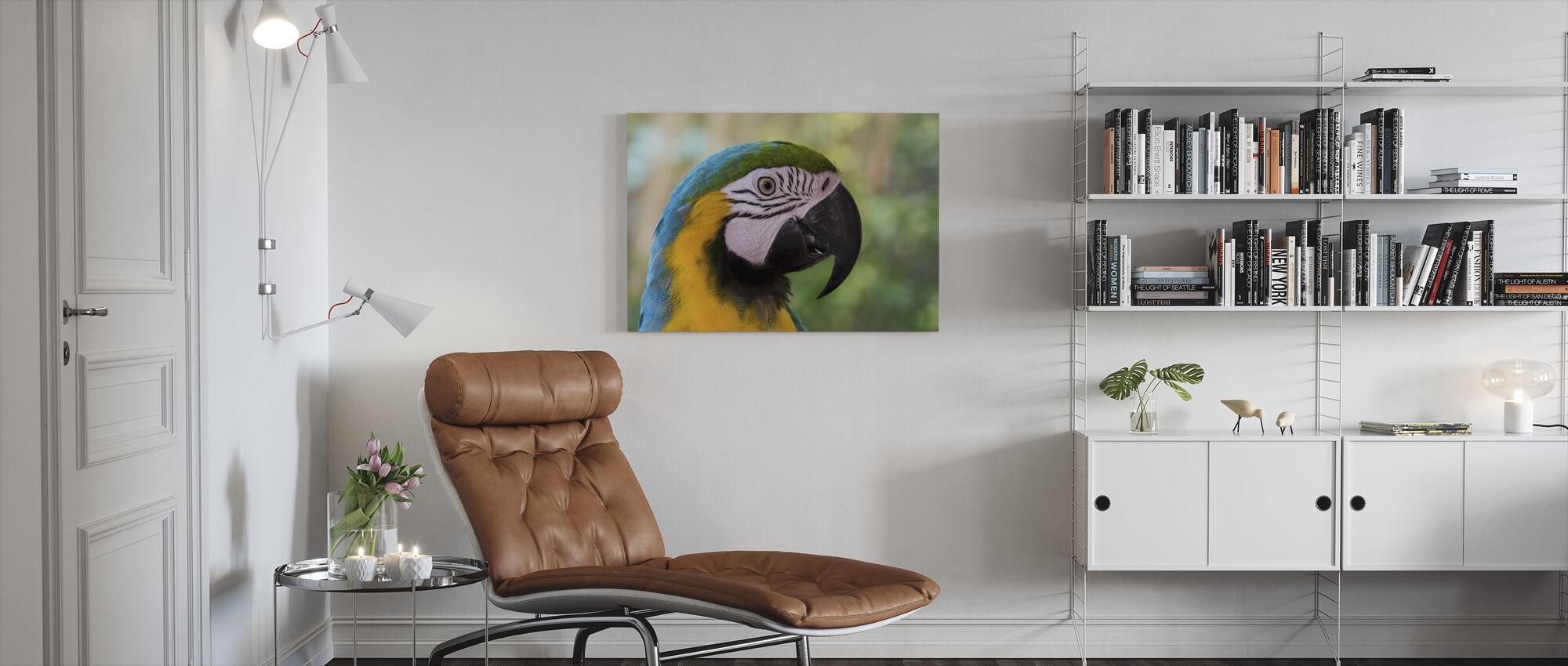 Färgglada ara - Canvastavla - Vardagsrum