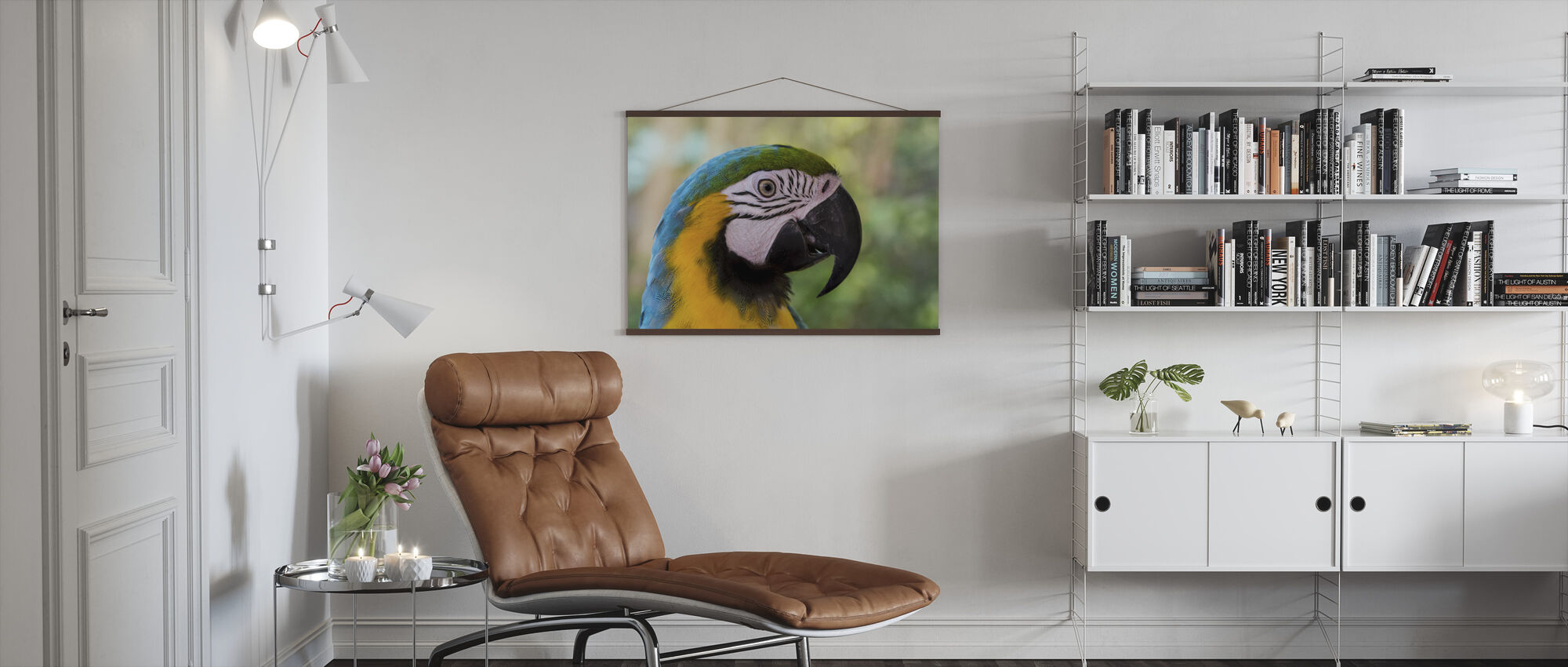 Colorful Macaw - Poster - Living Room