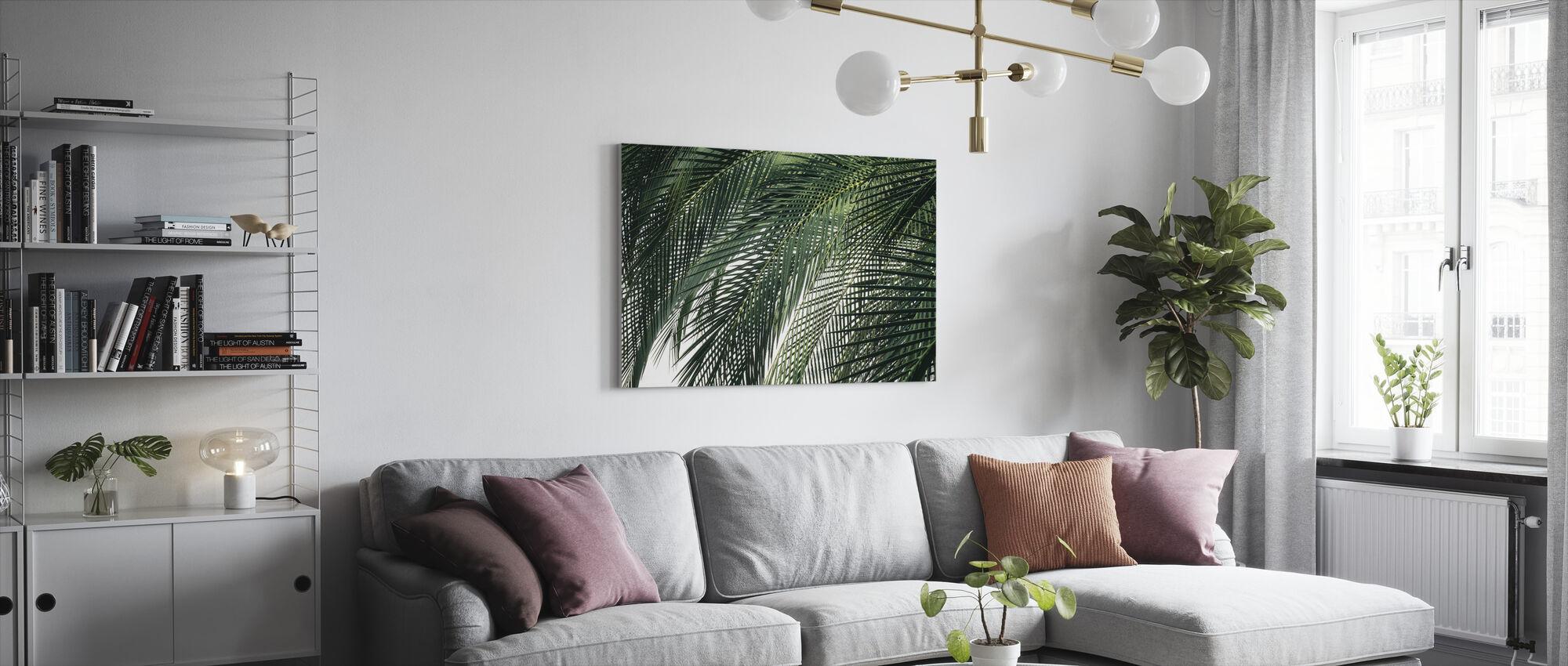 Palm Tree - Canvas print - Living Room