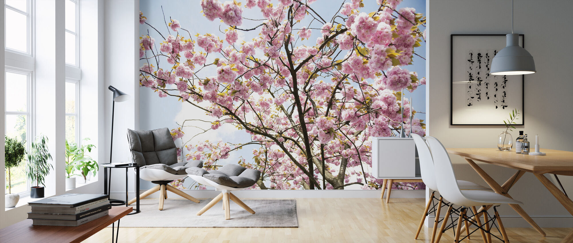 Cherry Blossoms - Wallpaper - Living Room