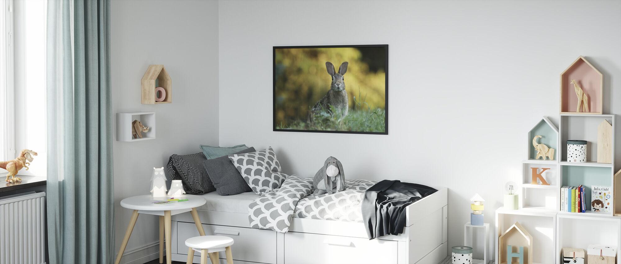Pörröinen kani - Kehystetty kuva - Lastenhuone