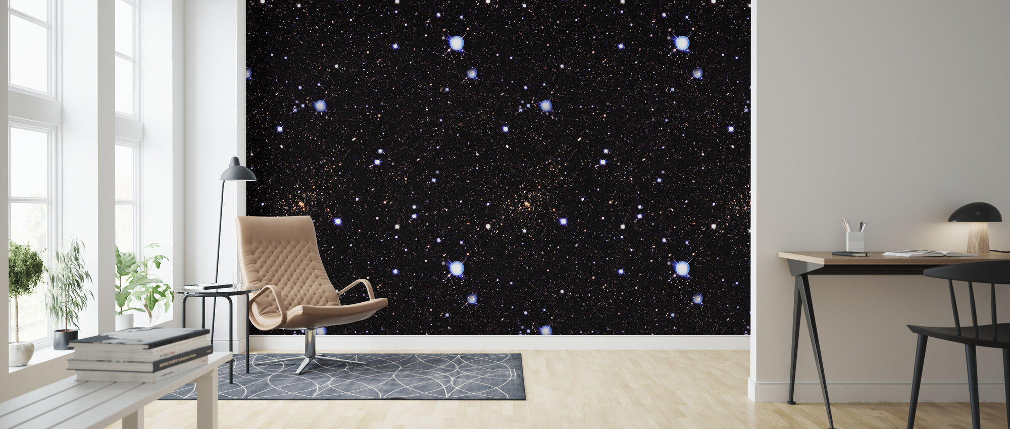Starfield Night - Wallpaper - Living Room