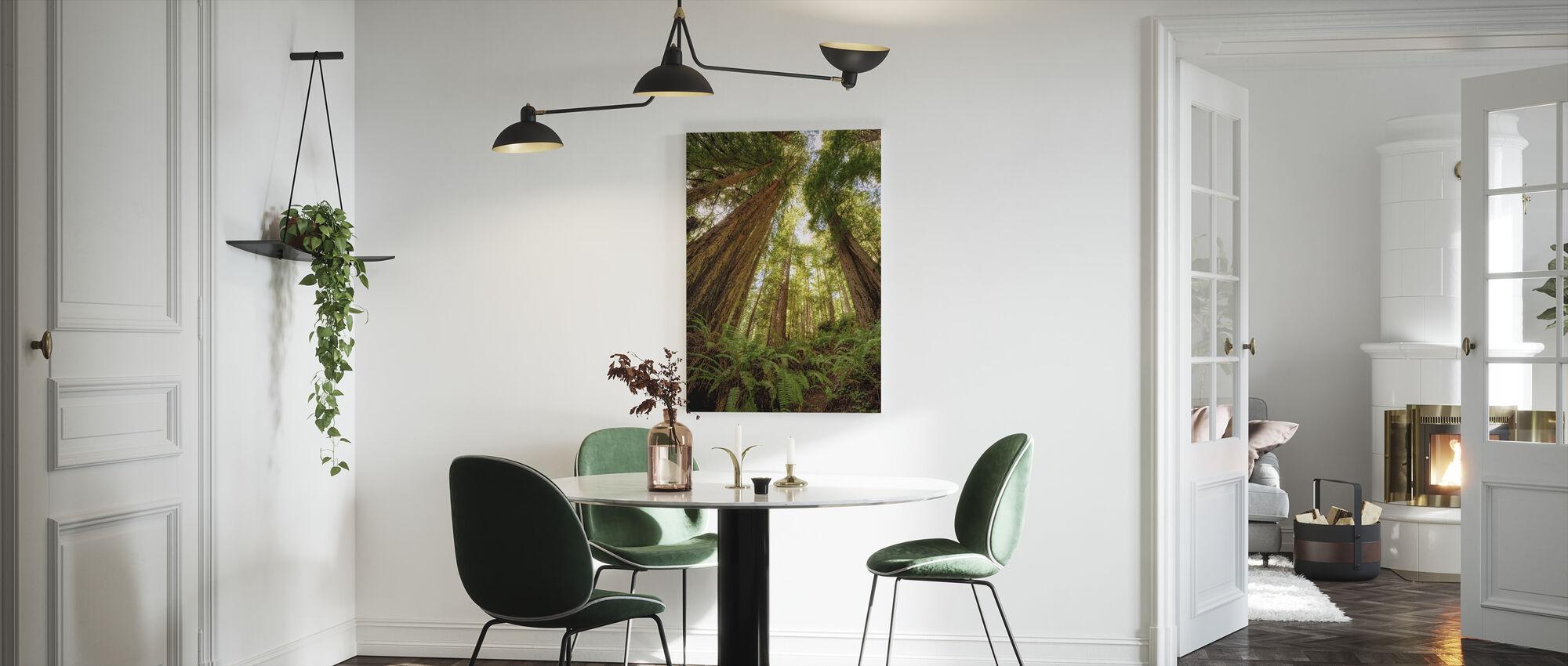 Redwoodin metsä - Canvastaulu - Keittiö