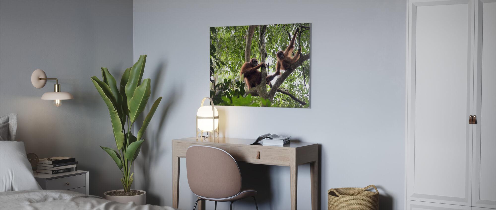 Vrouwelijke en zuigelingen-orang-oetan - Canvas print - Kantoor