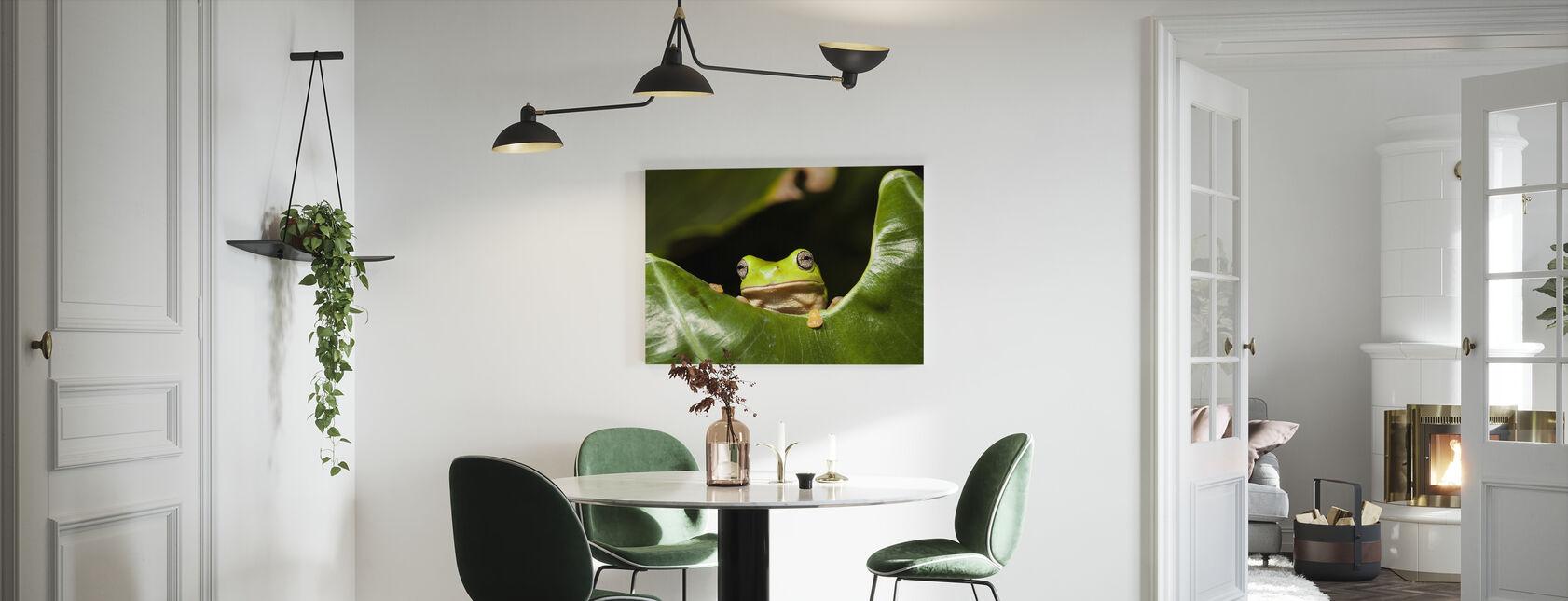 Groene Boom Kikker - Canvas print - Keuken
