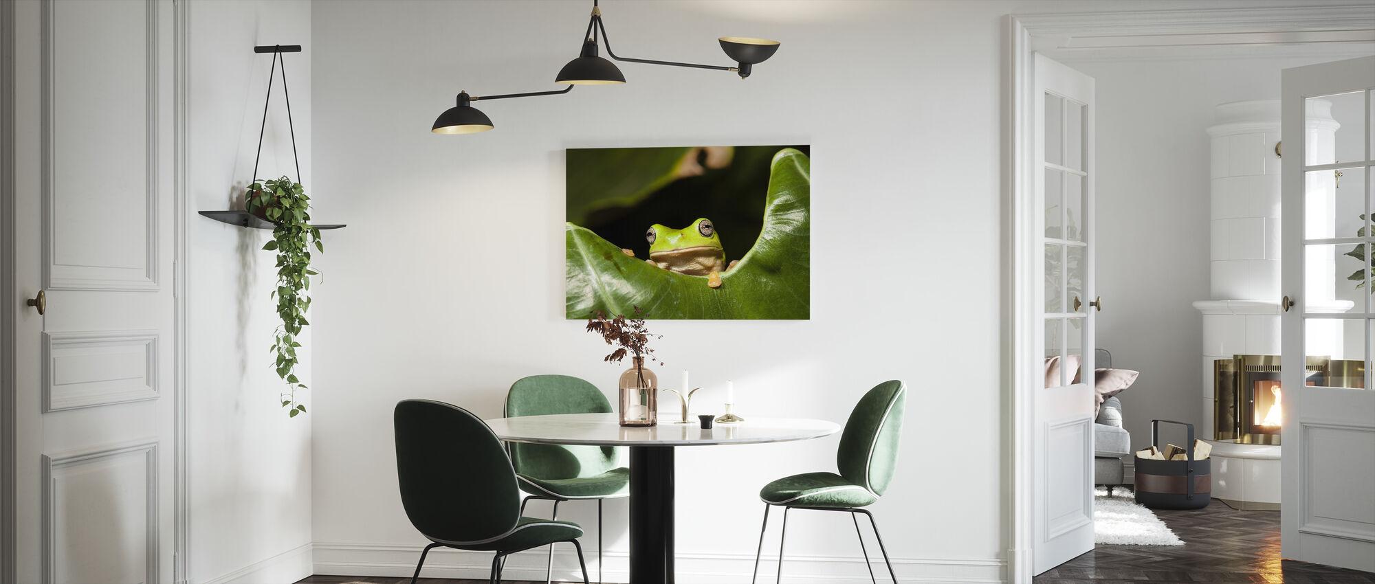 Green Tree Frog - Canvas print - Kitchen
