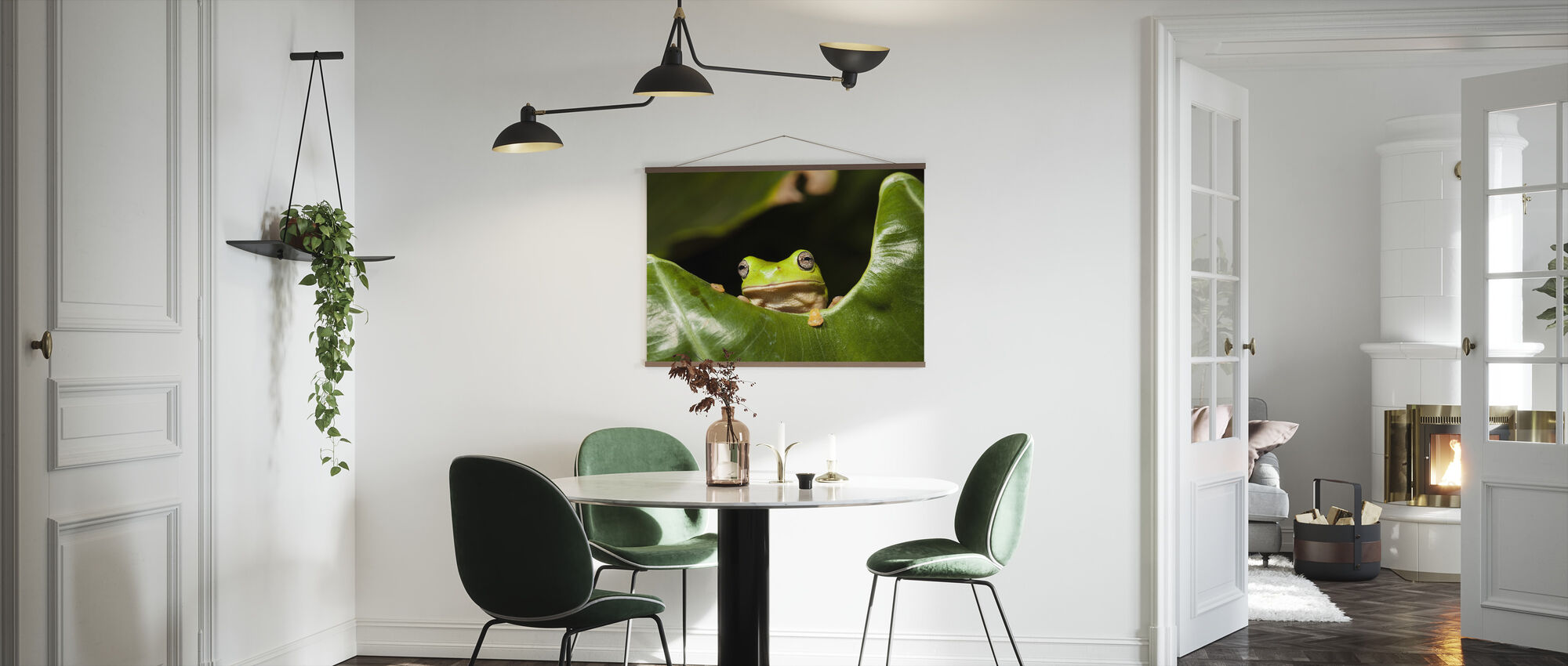 Green Tree Frog - Poster - Kitchen