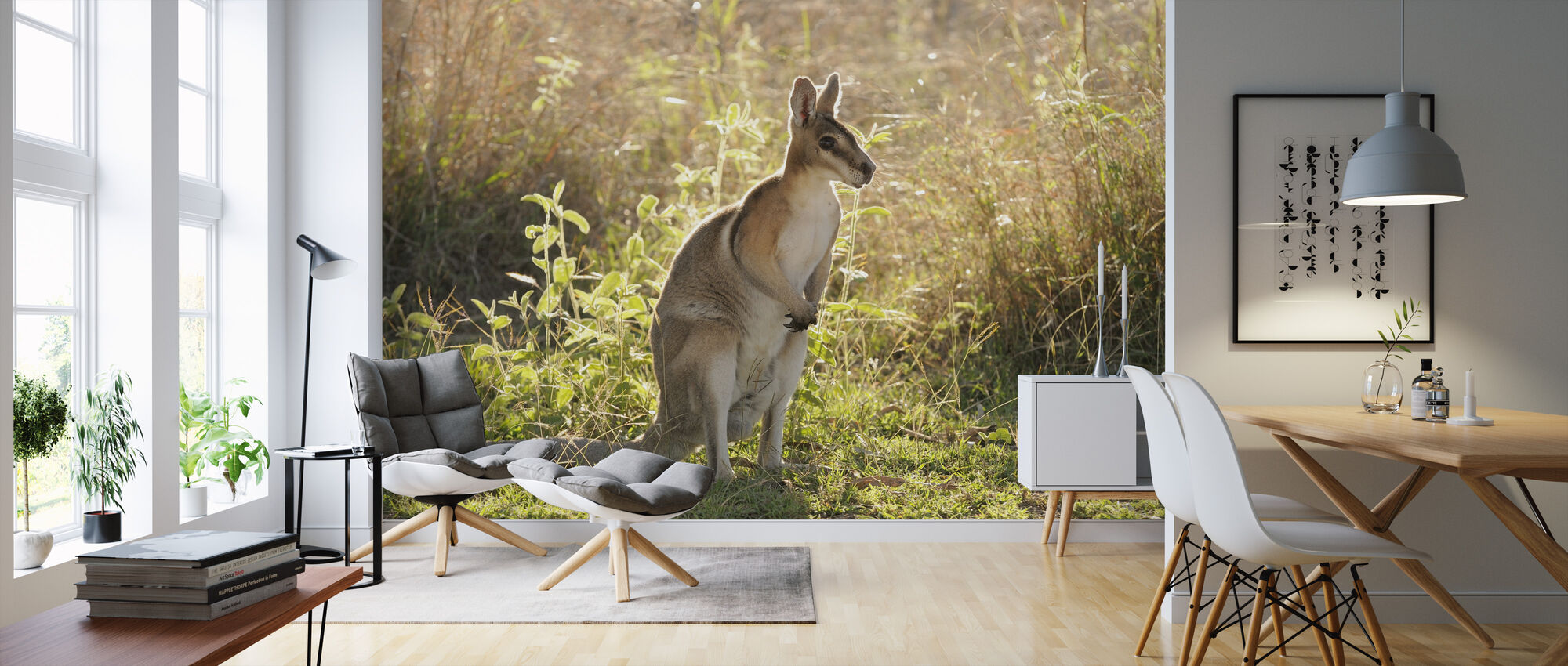 Bridled Nailtail Wallaby - Wallpaper - Living Room
