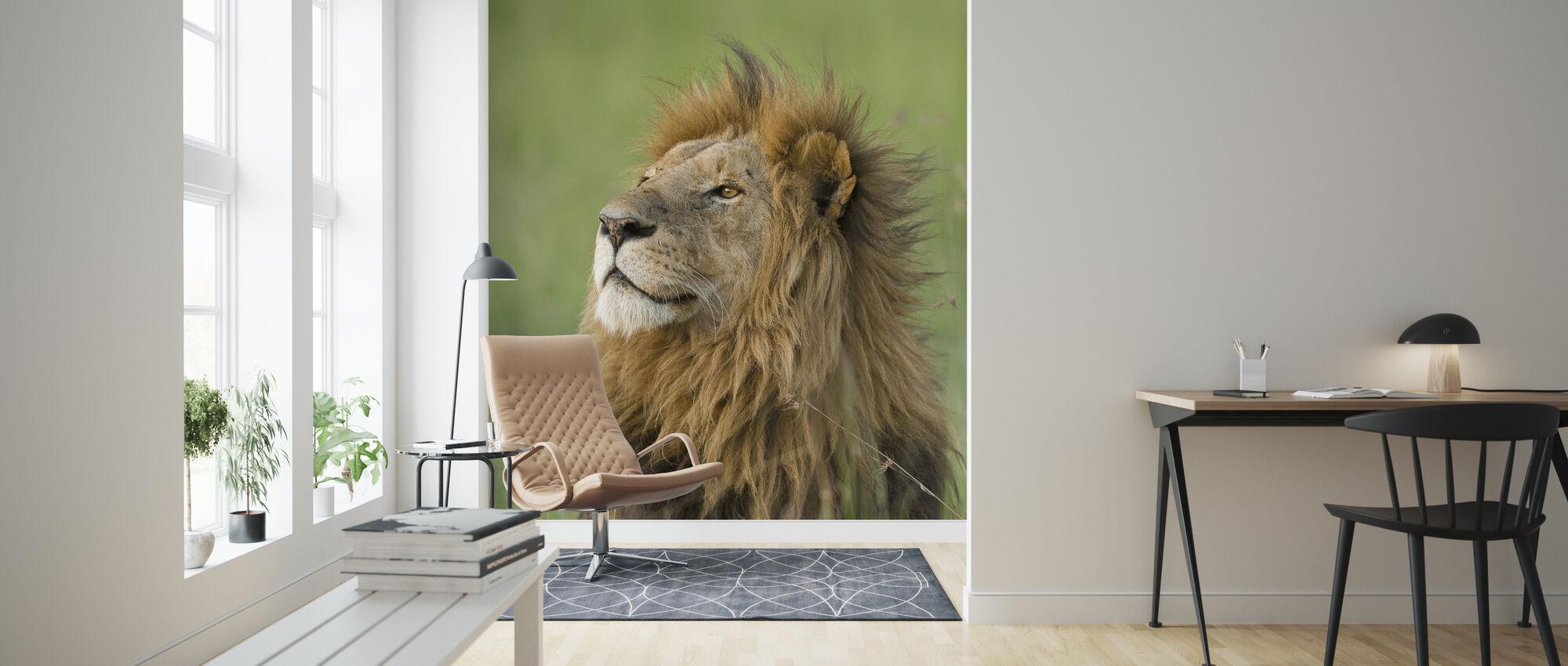 Leeuw Mannelijk - Behang - Woonkamer