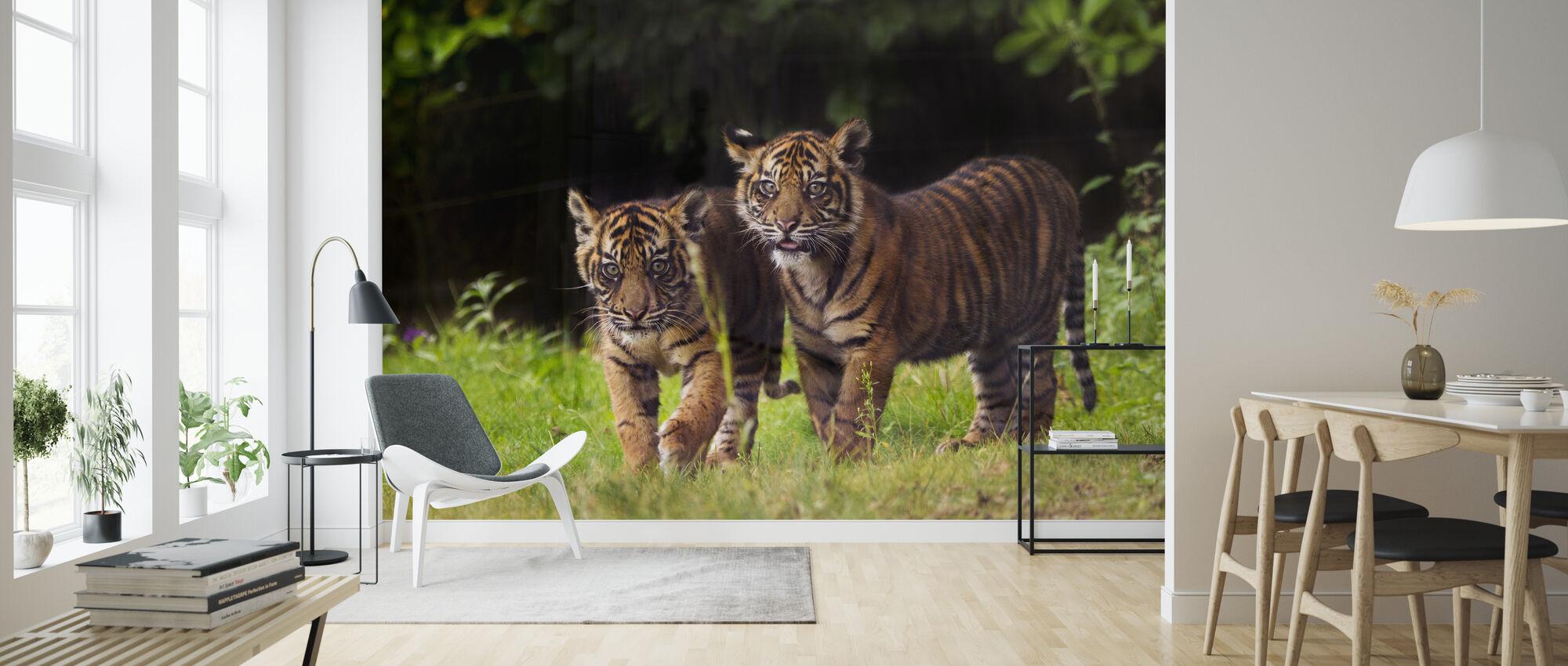 Sumatra-Tiger mit Junges - Tapete - Wohnzimmer