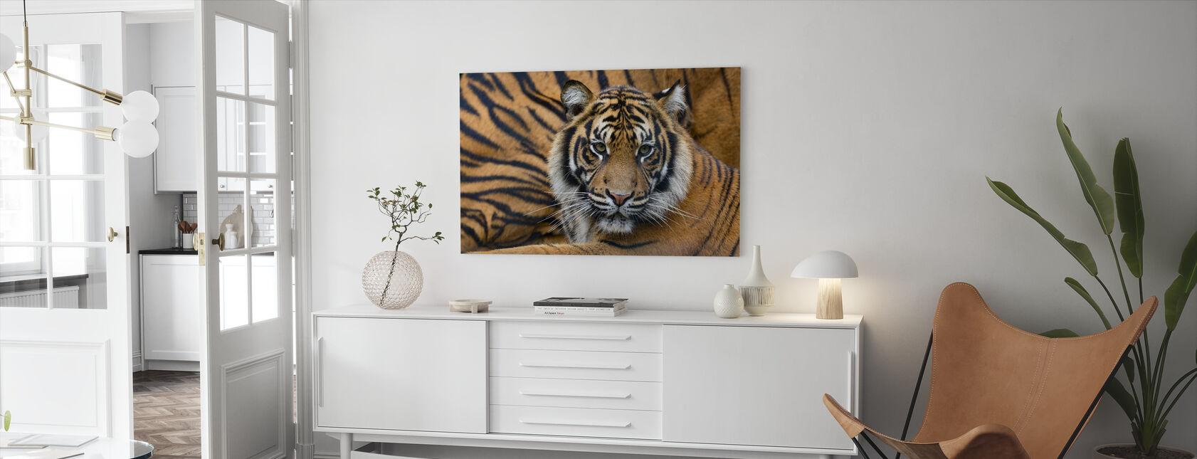 Sumatran Tiger - Canvas print - Living Room