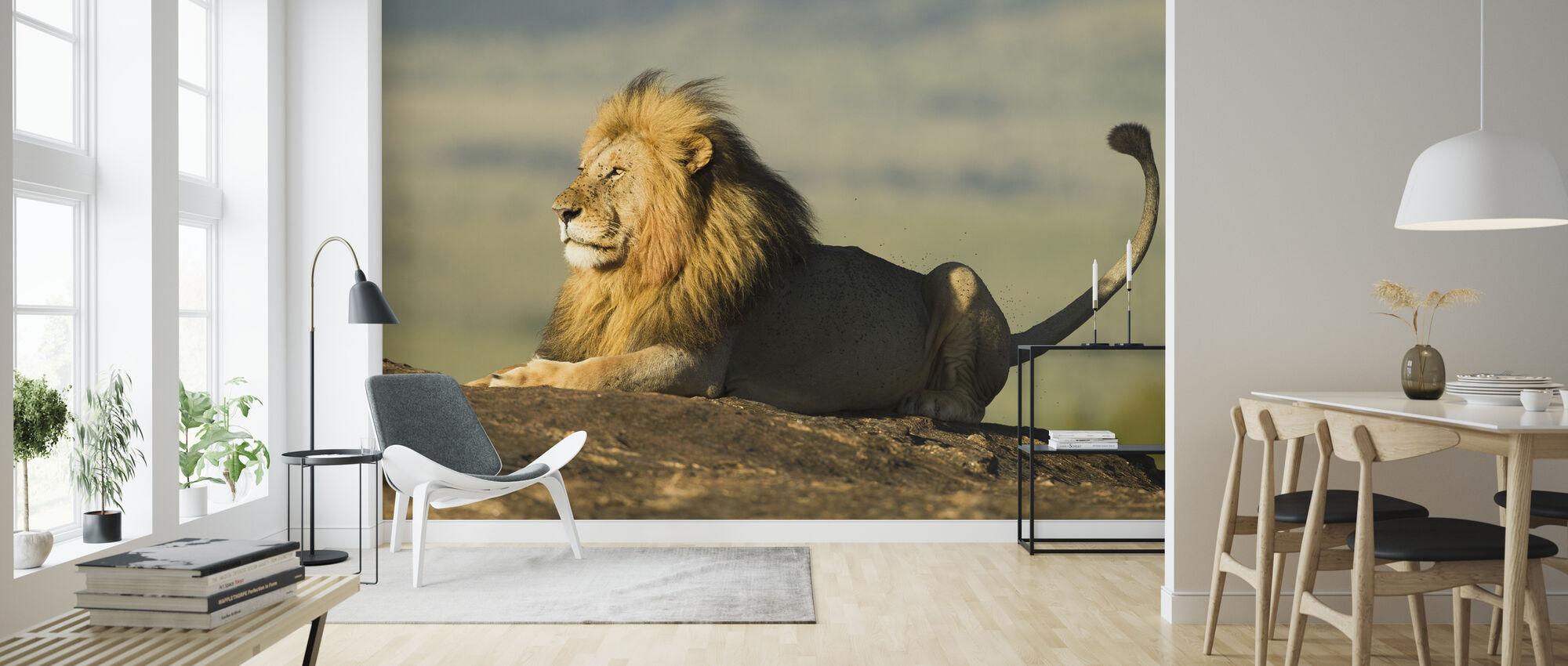 Leeuw op een rots - Behang - Woonkamer