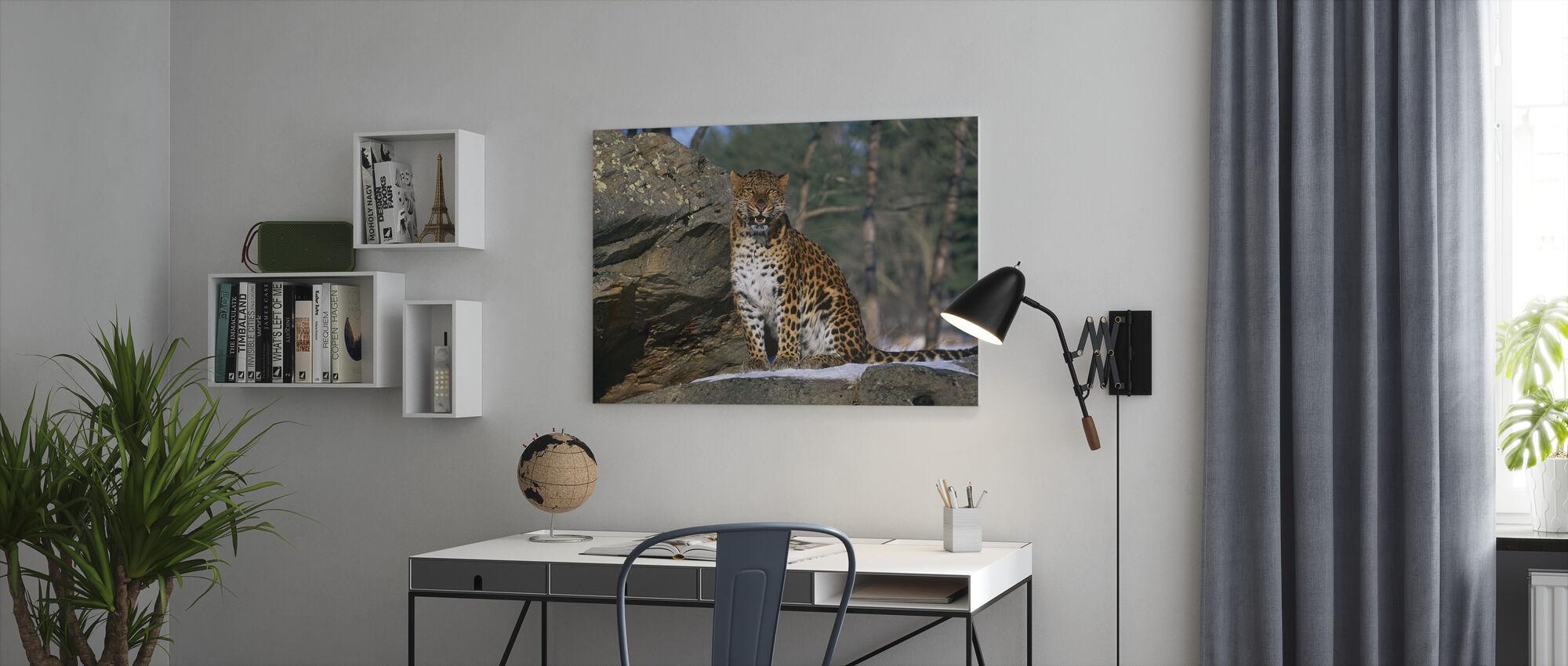 Sitting Leopard - Canvas print - Office