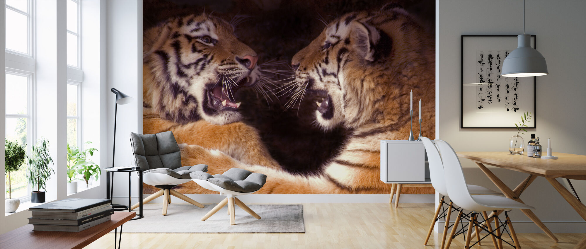 Play Fighting Cubs - Wallpaper - Living Room