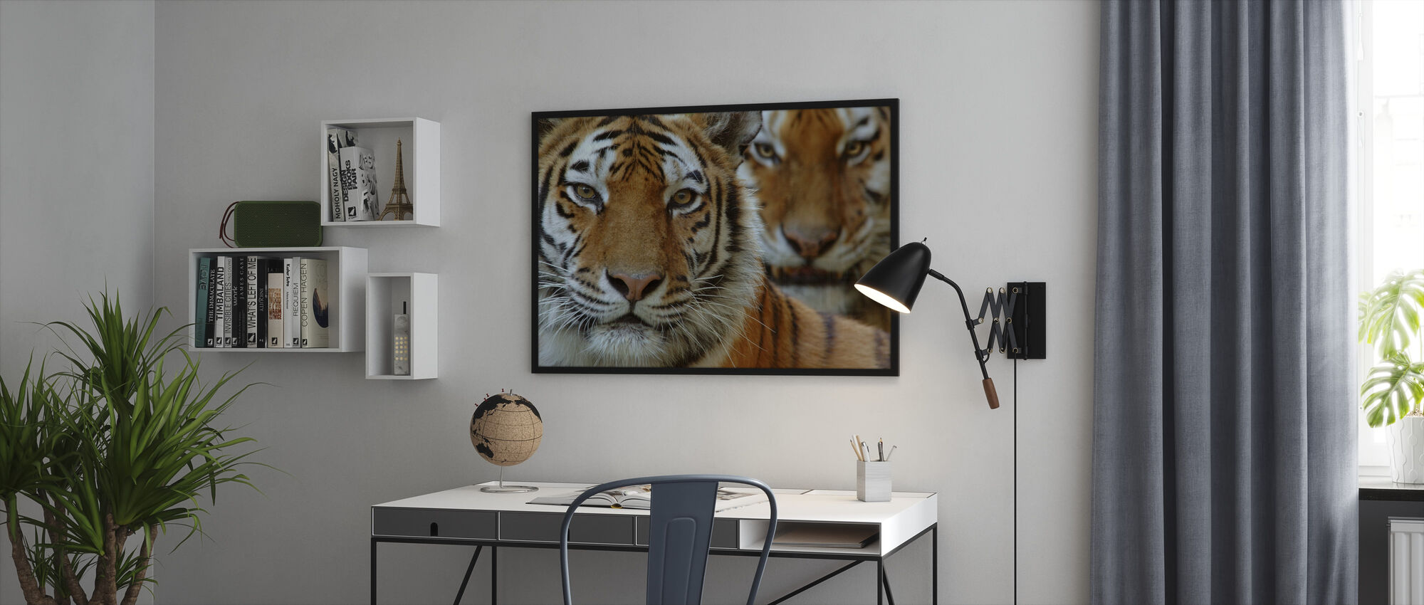 Two Siberian Tigers - Framed print - Office