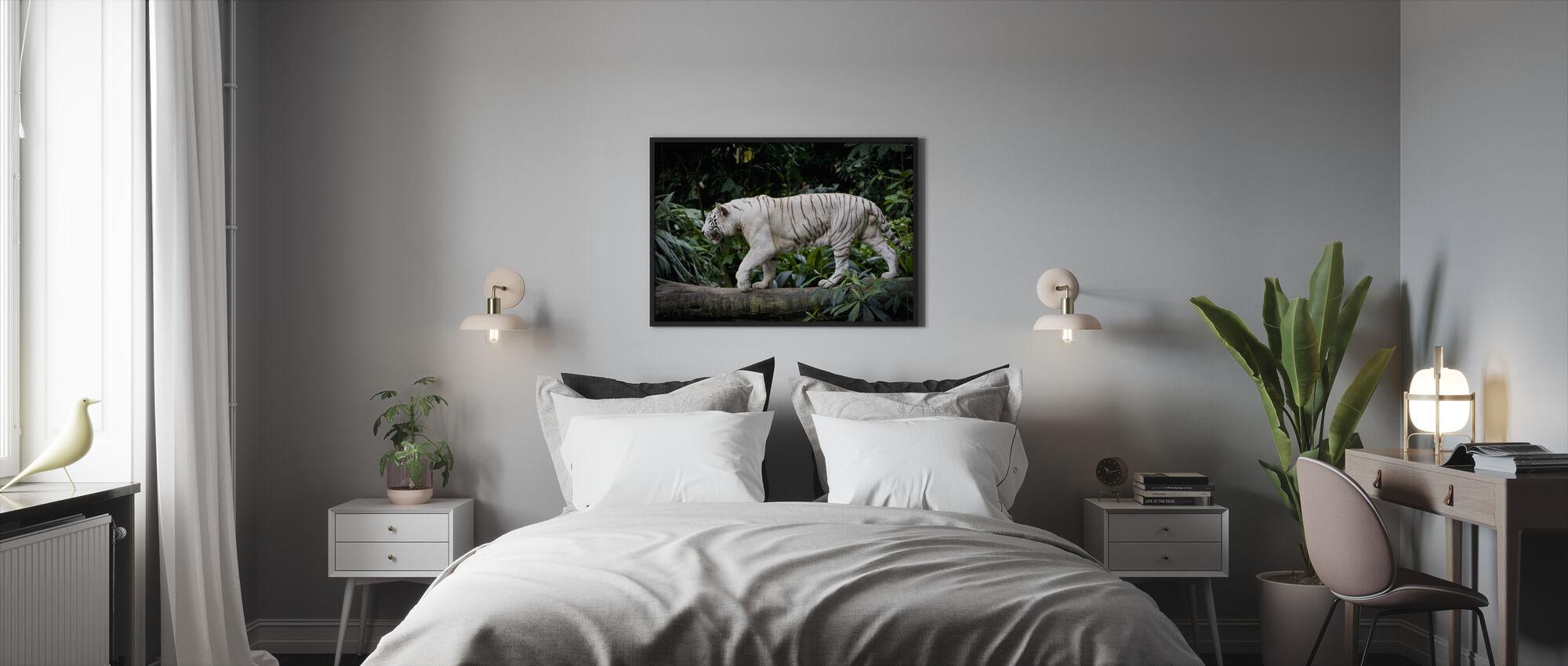 Mies Valkoinen Tiikeri - Kehystetty kuva - Makuuhuone