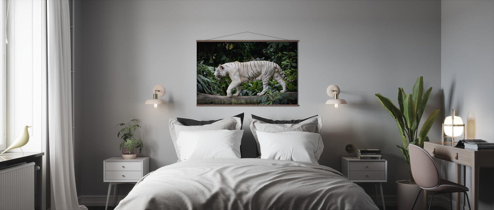 Tigre Branco Masculino - Póster - Dormitorio