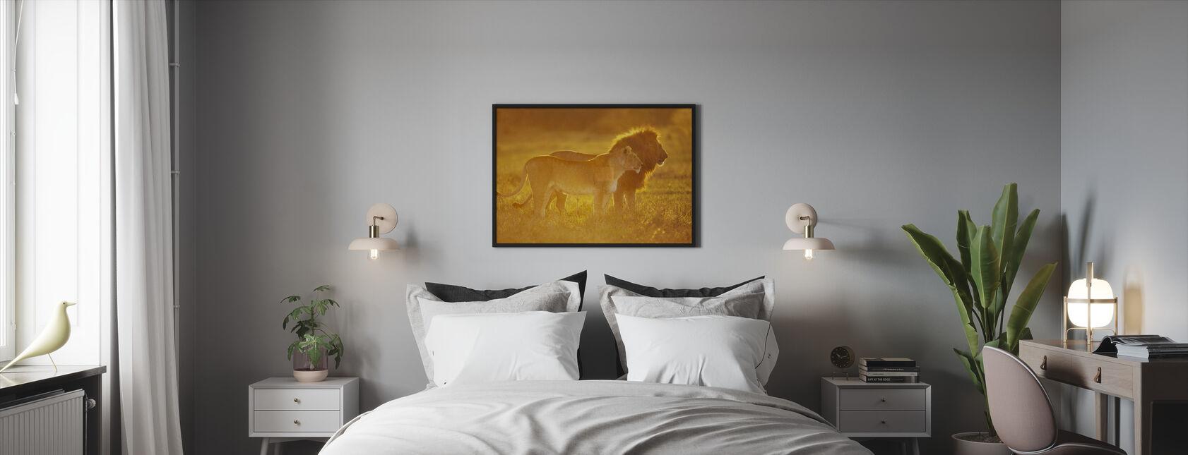 Male and Female Lion - Framed print - Bedroom