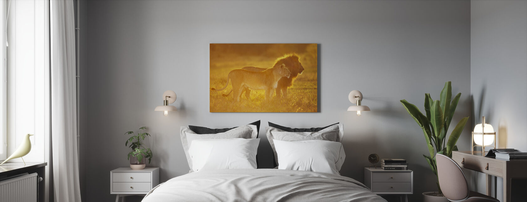 Mannlig og kvinnelig Løve - Lerretsbilde - Soverom