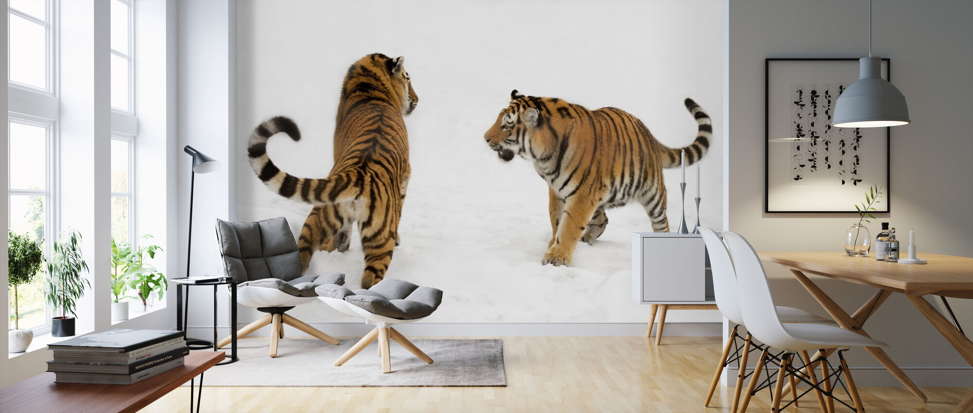 Tigers Play Fighting - Wallpaper - Living Room