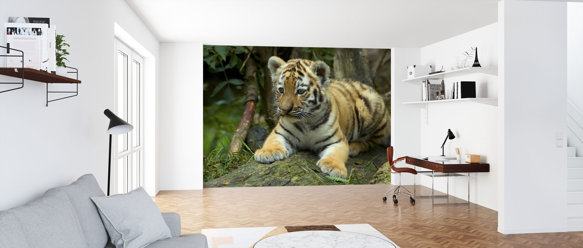 Young Cub - Wallpaper - Office