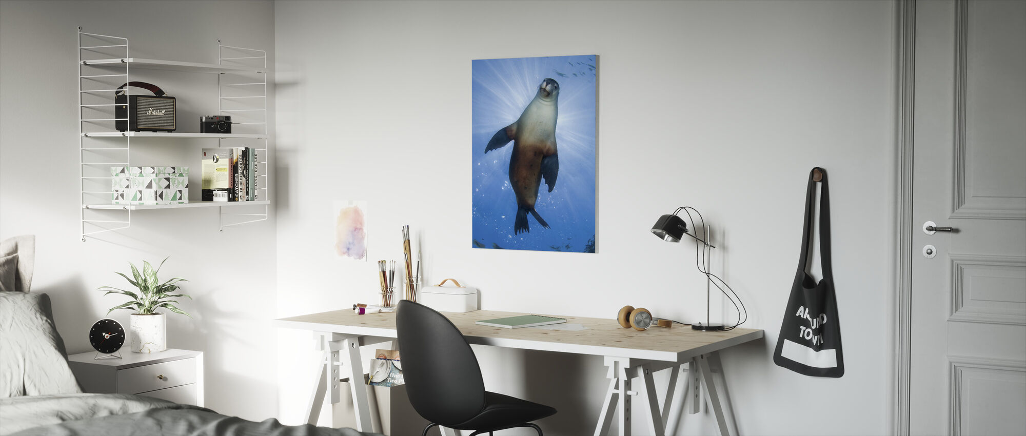 Australian Sea Lion - Canvas print - Kids Room