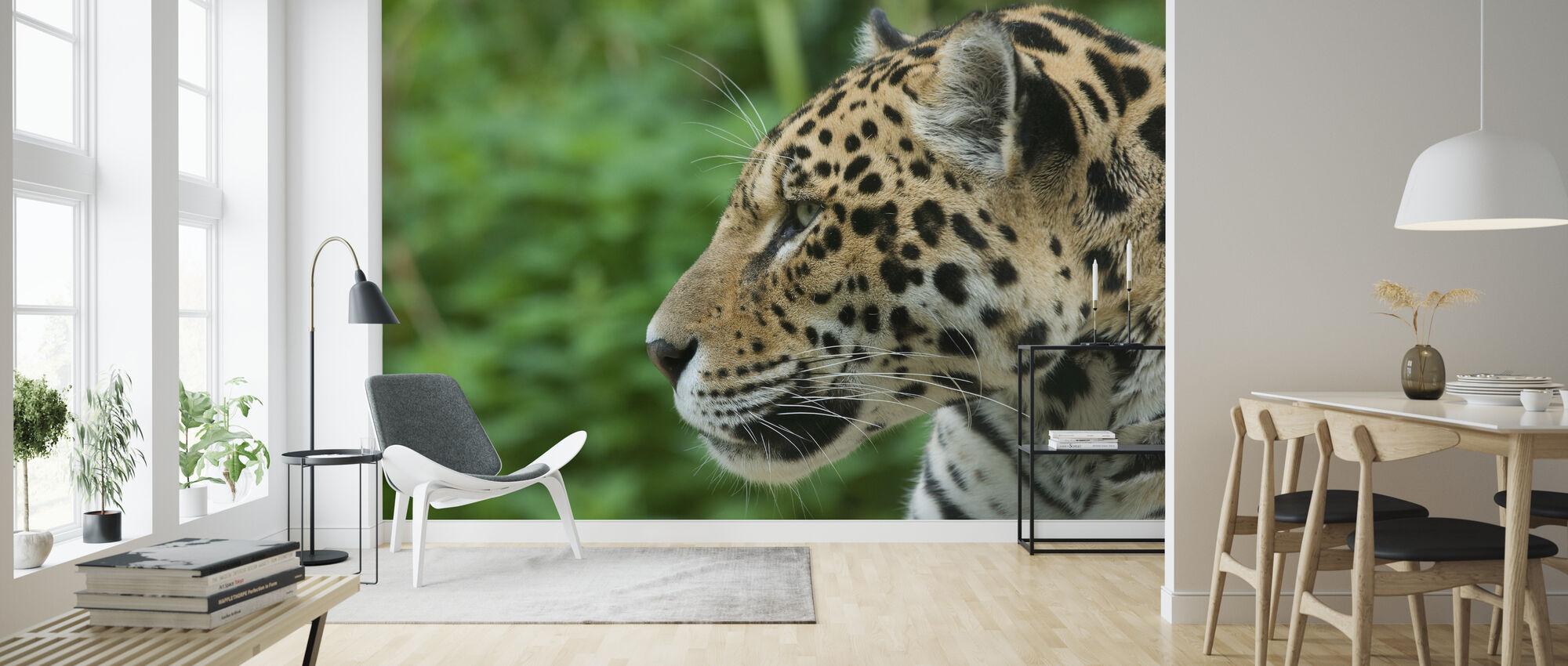 Jaguar - Behang - Woonkamer