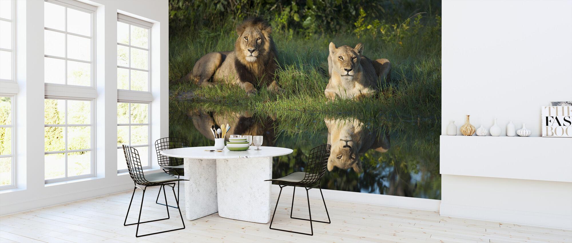 Leeuwen Reflectie - Behang - Keuken
