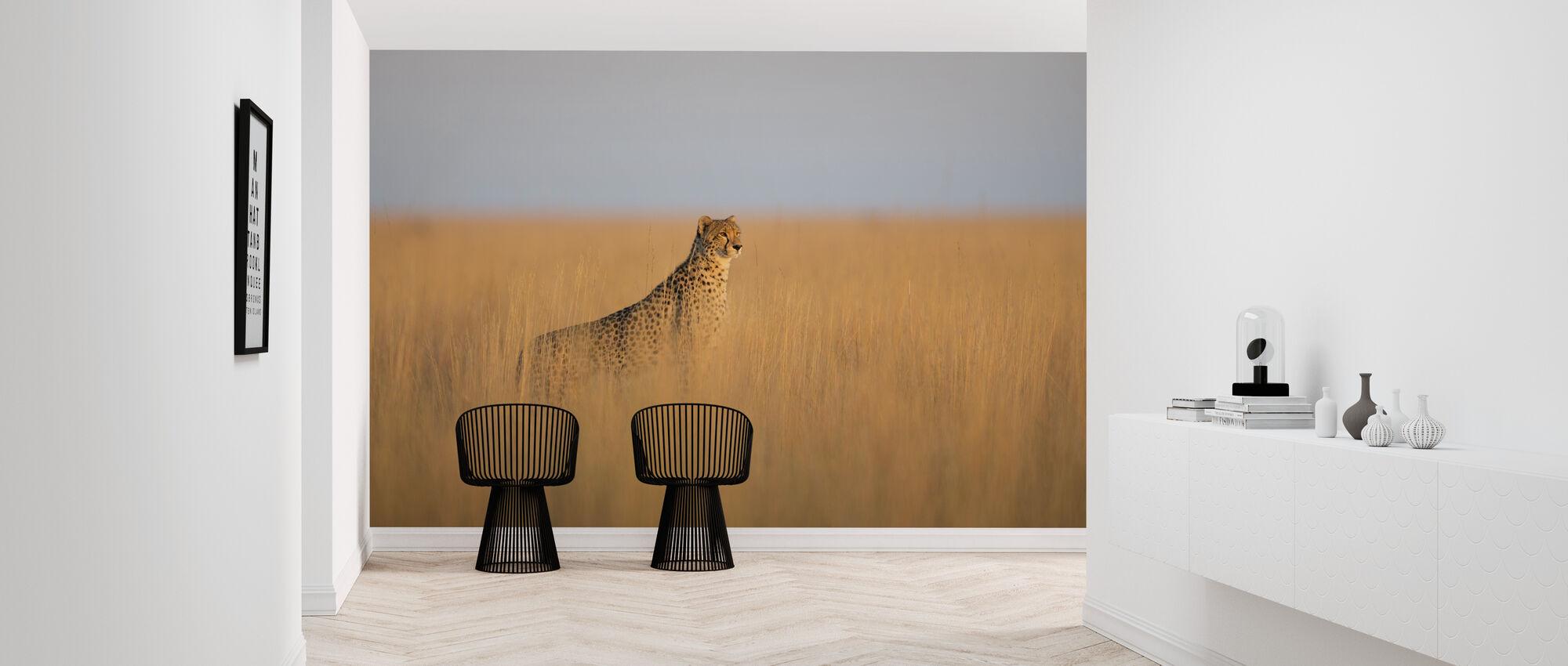 Cheetah in Long Grass - Wallpaper - Hallway