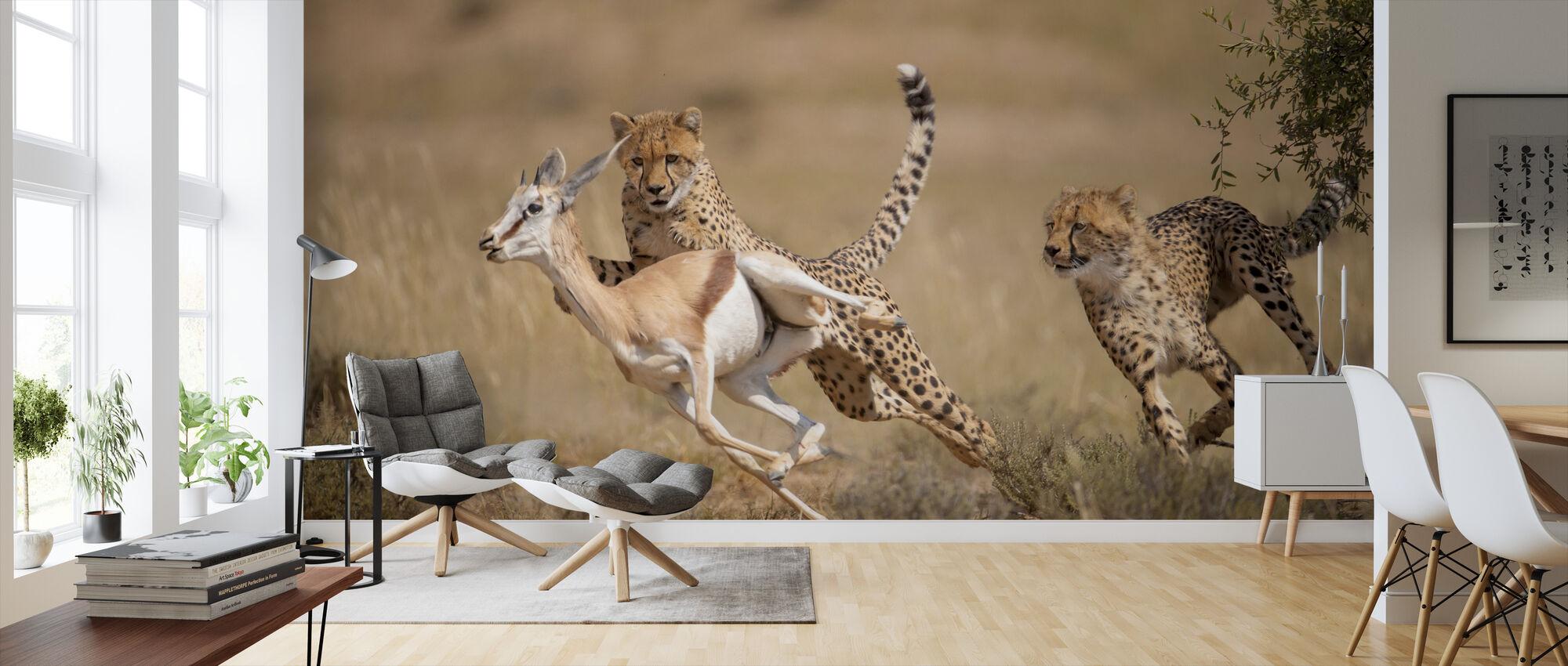 Jachtluipaard jacht Springbok - Behang - Woonkamer