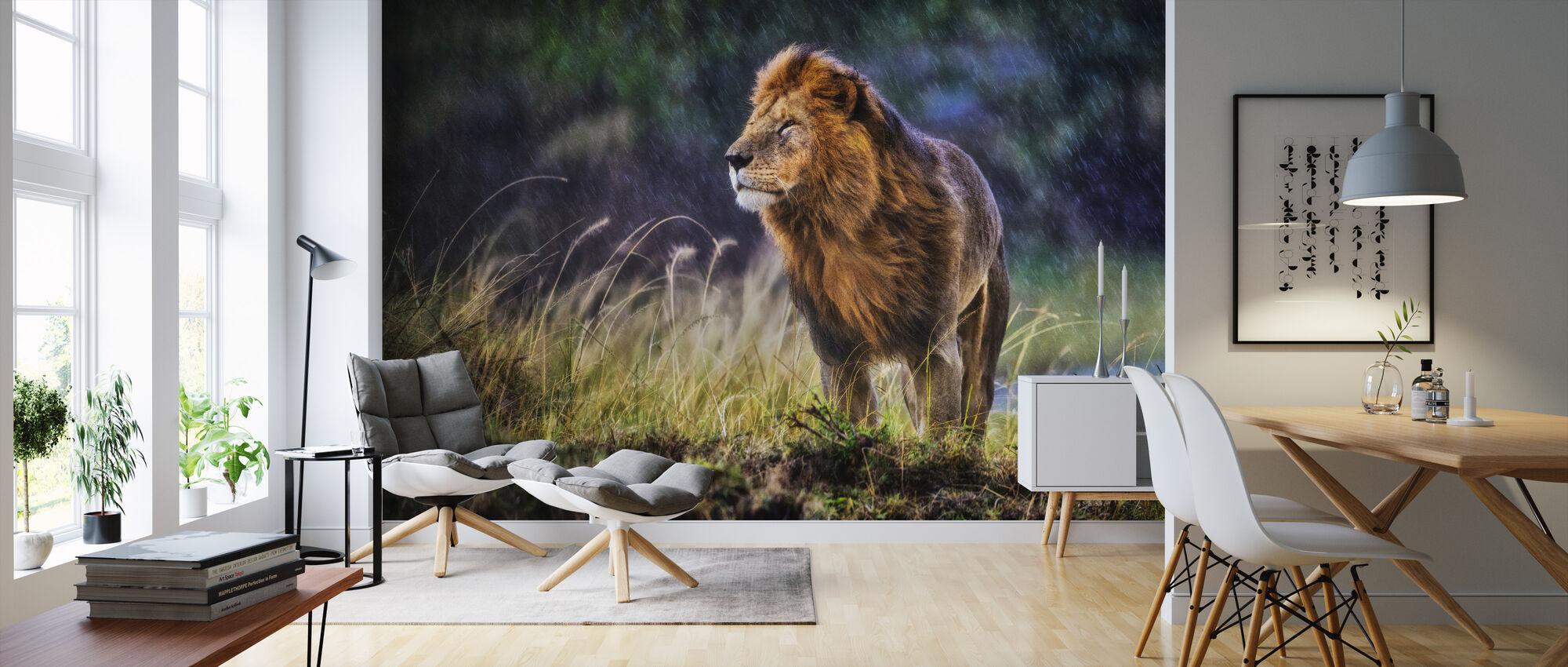 Under the Cold Rain - Wallpaper - Living Room