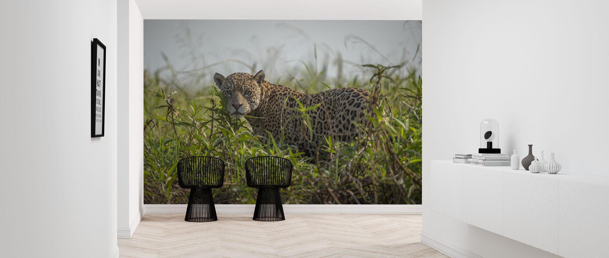 Male Jaguar - Wallpaper - Hallway