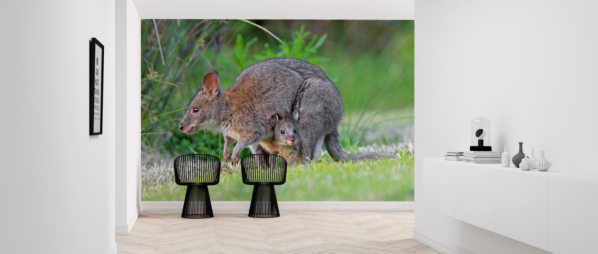 Red Necked Pademelon - Wallpaper - Hallway